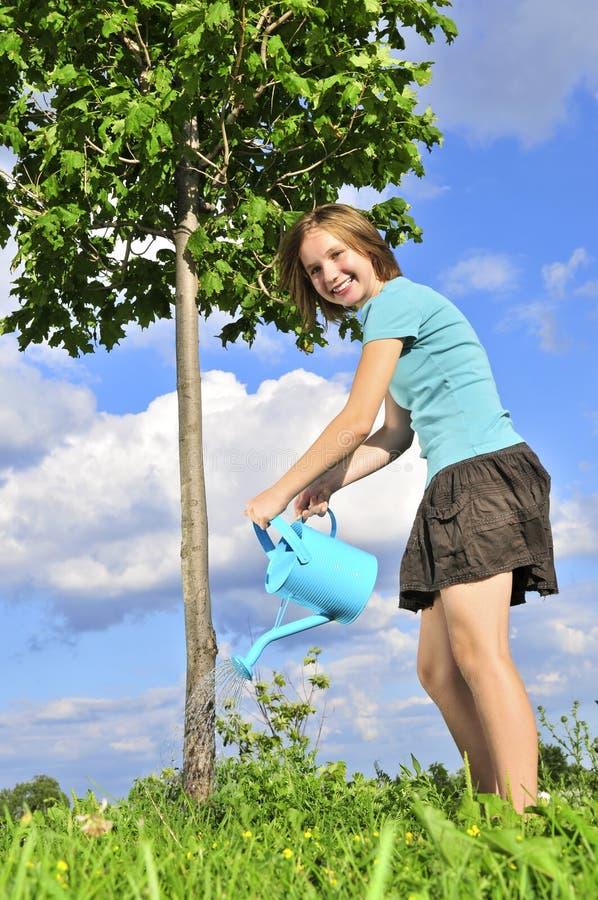 Ragazza che innaffia un albero fotografia stock