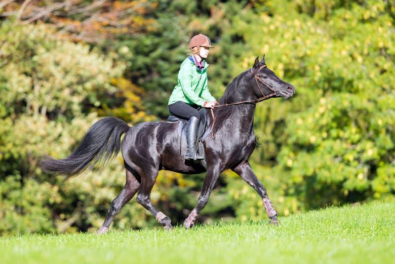 Ragazza che monta un cavallo nero in autunno fotografia stock libera da diritti
