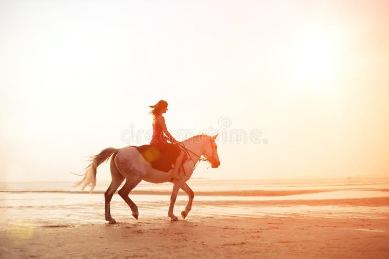Ragazza che monta un cavallo sui precedenti del mare fotografia stock