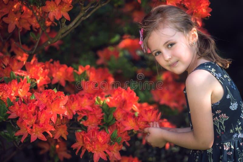 Ragazza che odora i fiori rossi in un parco fotografie stock libere da diritti