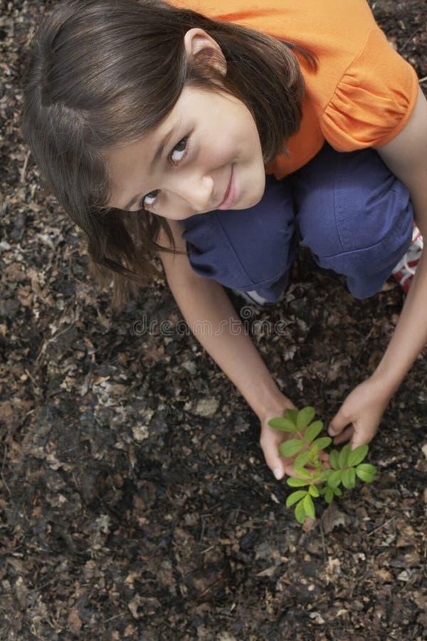 Ragazza che pianta l'albero di locusta nera fotografie stock