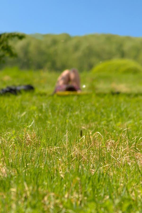 Ragazza che prende il sole in un parco della città sotto di melo fotografia stock libera da diritti