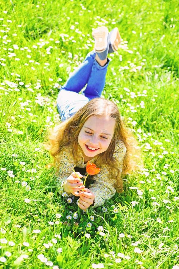 Ragazza che si trova sull'erba, grassplot su fondo Il bambino gode del giorno soleggiato della molla mentre si trova al prato con fotografia stock