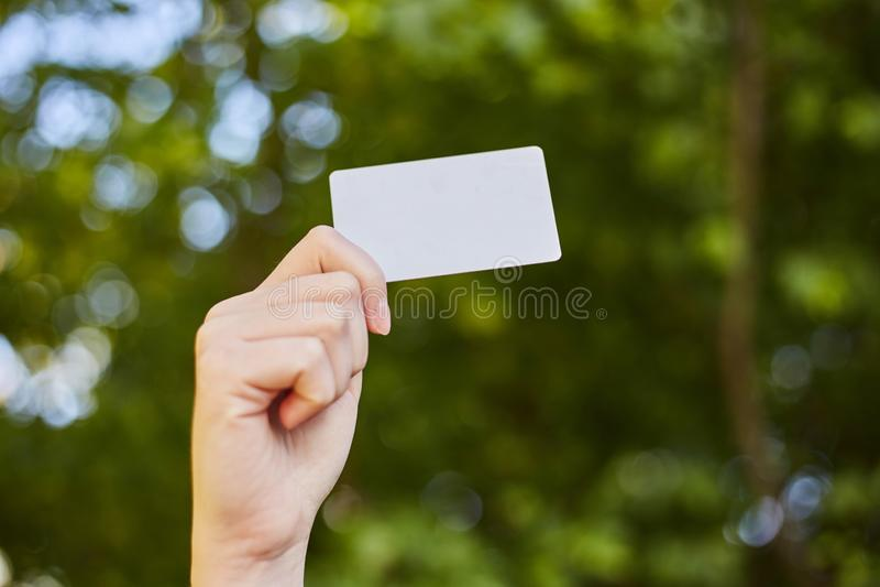 Ragazza che tiene una carta di credito bianca in sue mani per comperare fotografie stock