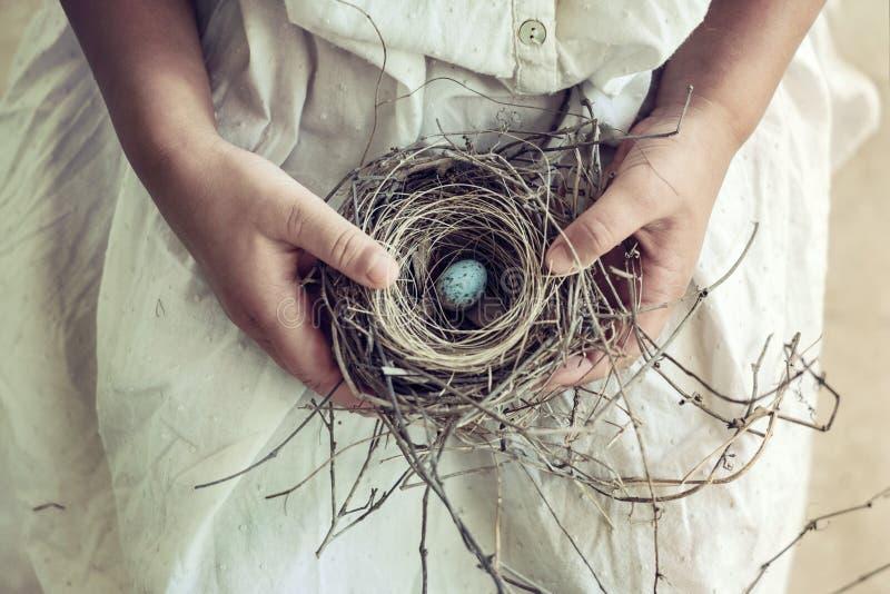 Ragazza che tiene uovo macchiato blu nel nido dell'uccello sul rivestimento fotografia stock