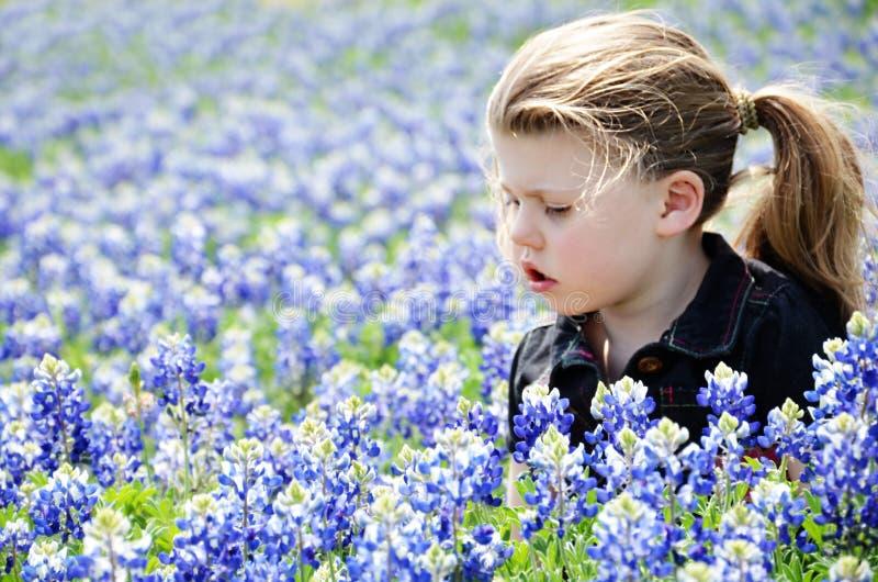 Ragazza in cofani blu fotografia stock libera da diritti