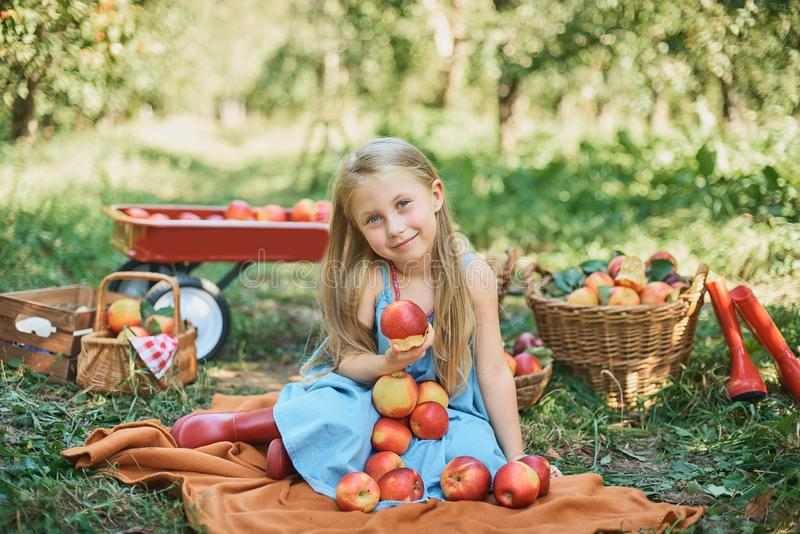 Ragazza con Apple nel meleto Bella ragazza che mangia Apple organico nel frutteto Concetto della raccolta Giardino, cibo del bamb immagine stock