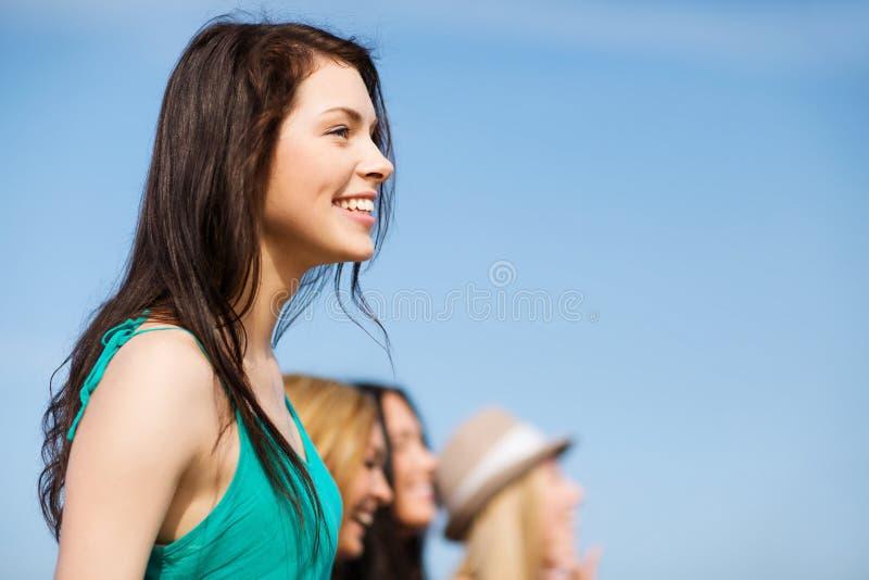 Ragazza con gli amici che camminano sulla spiaggia immagini stock libere da diritti