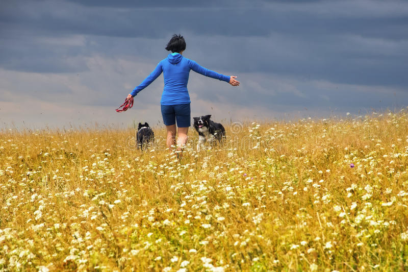 Ragazza con i cani sul prato fotografia stock