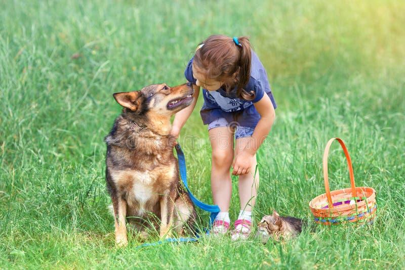 Ragazza con il cane ed il gatto sul picnic fotografia stock