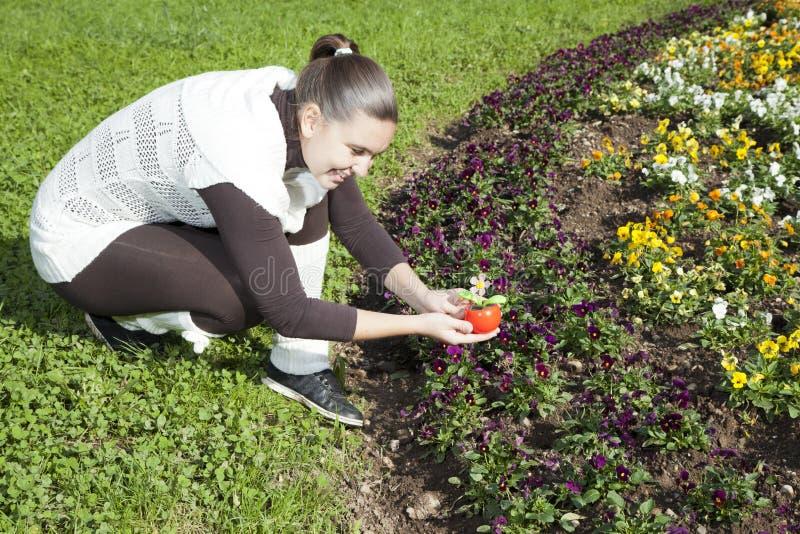 Ragazza con il fiore alimentato solare elettronico fotografie stock libere da diritti