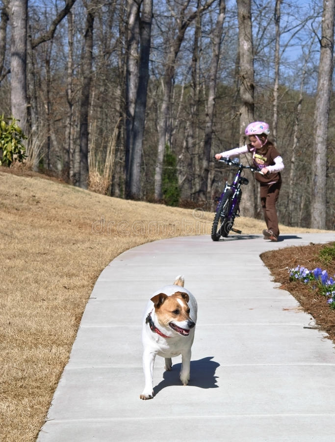 Ragazza con il suo cane fotografia stock libera da diritti