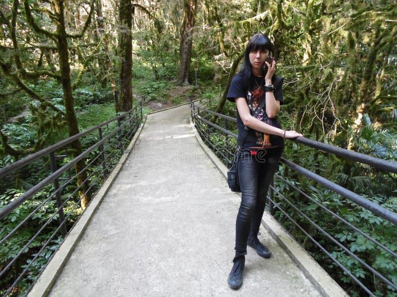 Ragazza con il telefono che sta sul ponte nel boschetto del relitto immagine stock