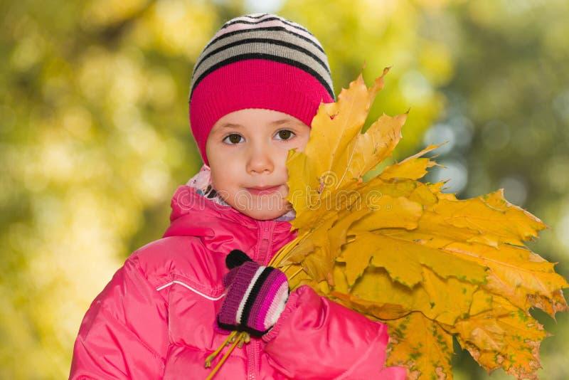 Ragazza con le foglie gialle fotografia stock libera da diritti