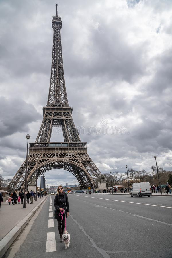 Ragazza con Shih Tzu a Parigi fotografia stock