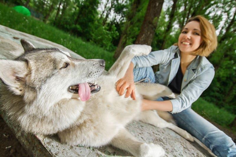 Ragazza con un cane nella natura fotografie stock