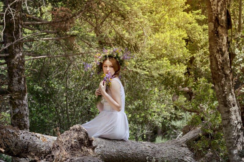Ragazza con una corona dei wildflowers immagini stock