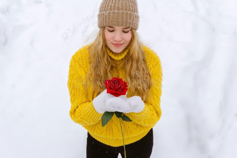 Ragazza con una rosa sui precedenti di neve fotografie stock