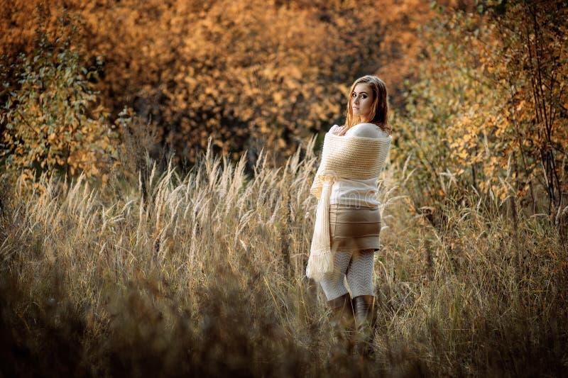 Ragazza dai capelli rossi in vestiti leggeri contro lo sfondo della foresta di autunno e delle orecchie gialle fotografia stock libera da diritti