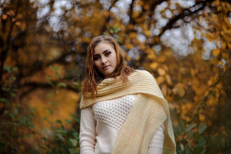 Ragazza dai capelli rossi in vestiti luminosi su un fondo della foresta di autunno fotografie stock libere da diritti