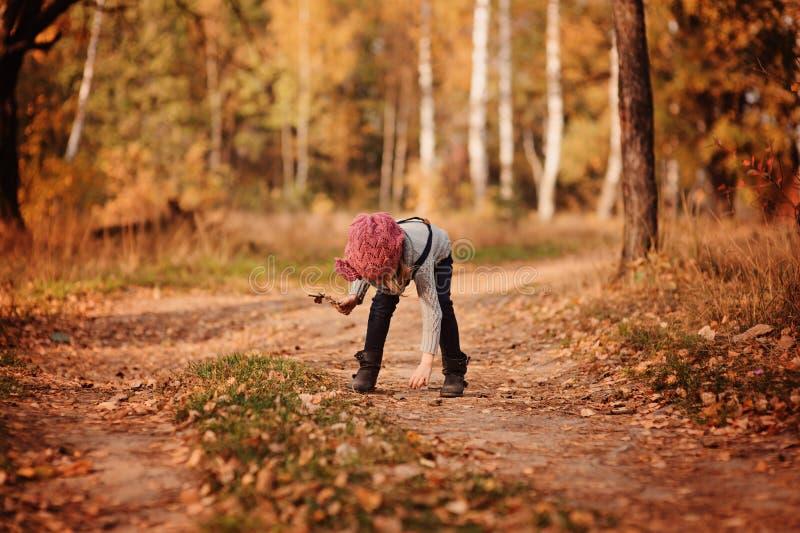 Ragazza del bambino sulla passeggiata nella foresta di autunno fotografie stock libere da diritti
