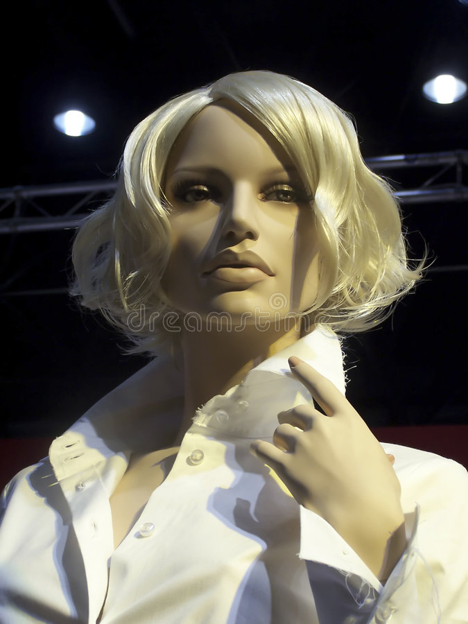 Download Ragazza del Mannequin fotografia stock. Immagine di faccia - 3890676