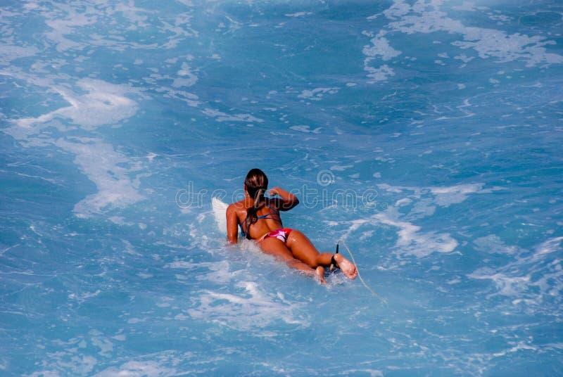 Ragazza del surfista che rema per catturare un'onda fotografie stock