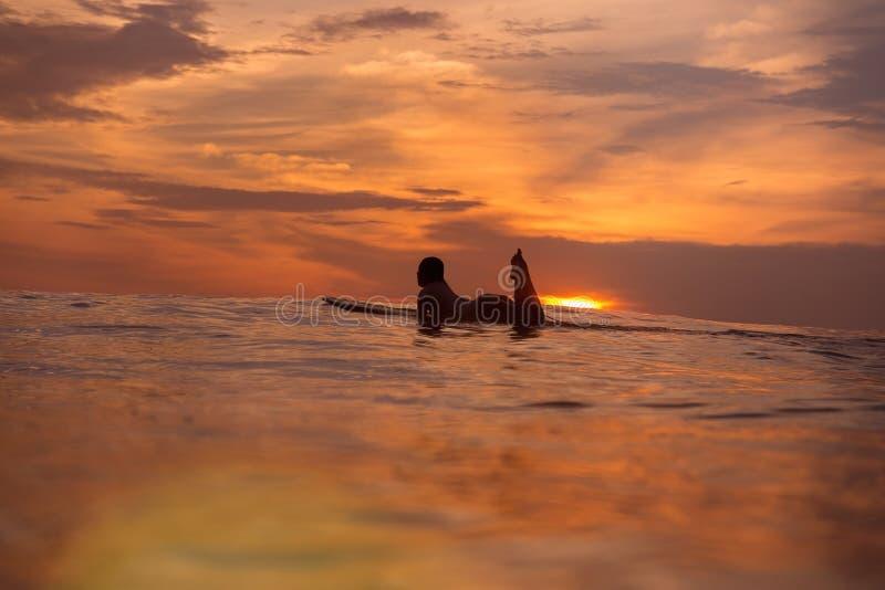 Ragazza del surfista in oceano a tempo di tramonto fotografia stock libera da diritti