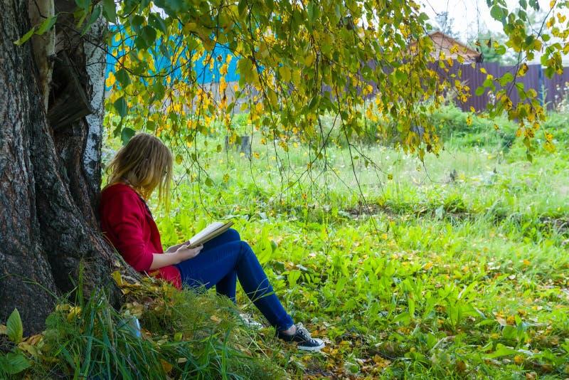 Ragazza dell'adolescente che legge un libro in foresta immagini stock libere da diritti
