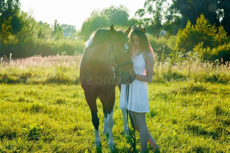 Ragazza dell'adolescente in vestito bianco con il cavallo nel campo fotografia stock libera da diritti