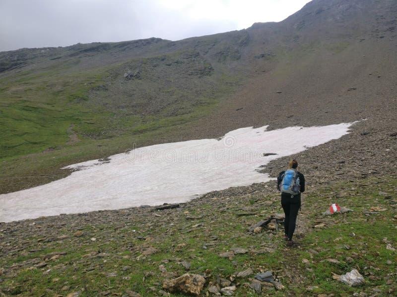 Ragazza della viandante che cammina su un campo di neve e della pietra nelle montagne con lo zaino immagine stock libera da diritti