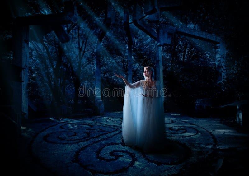 Ragazza di Elf nella versione della foresta di notte fotografia stock libera da diritti