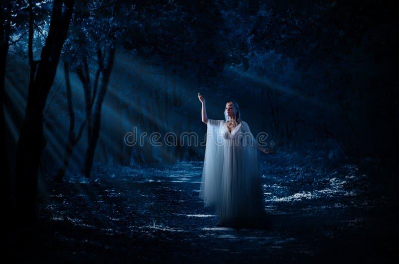 Ragazza di Elven alla foresta fotografie stock libere da diritti