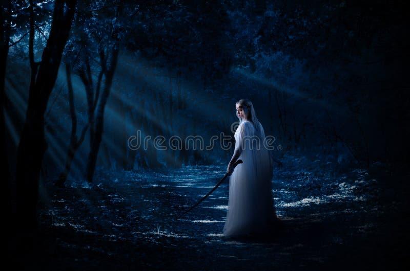 Ragazza di Elven alla foresta fotografia stock