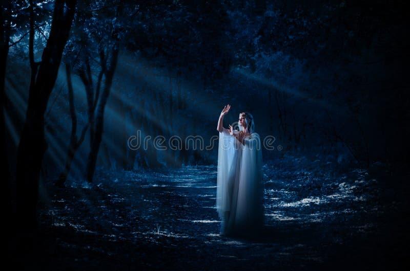 Ragazza di Elven alla foresta fotografie stock