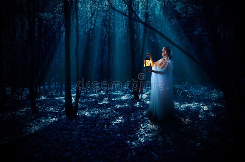 Ragazza di Elven con la lanterna alla foresta di notte immagini stock