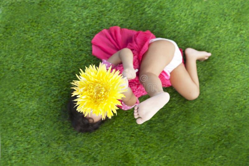 Ragazza di estate con il fiore del gerbera fotografia stock libera da diritti