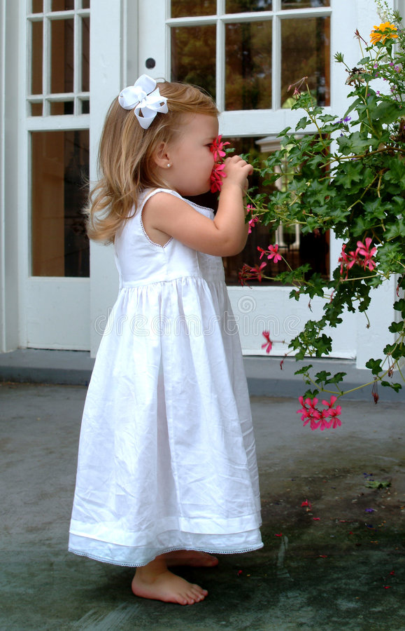 ragazza di fiore piccolo che sente l'odore fotografia stock