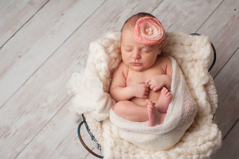 Ragazza di neonato che indossa una fascia del fiore fotografia stock libera da diritti