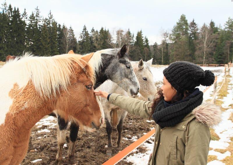 Ragazza di Papuan con i cavalli fotografia stock