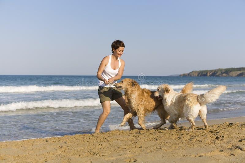 Ragazza di Yong che gioca con i suoi cani fotografia stock