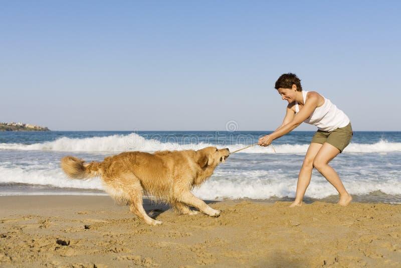 Ragazza di Yong che gioca con il suo cane fotografia stock libera da diritti