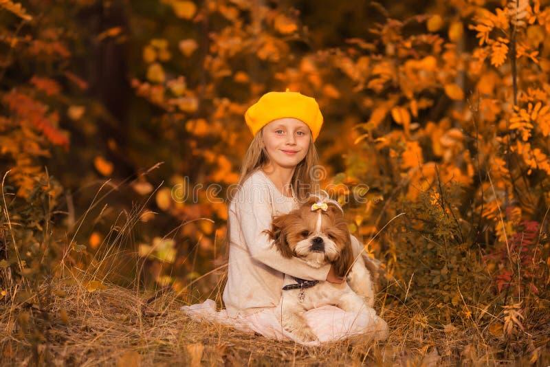 Ragazza dolce che abbraccia tzu dello shih del cane nella foresta di autunno immagine stock