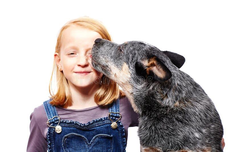 Ragazza e cane fotografie stock