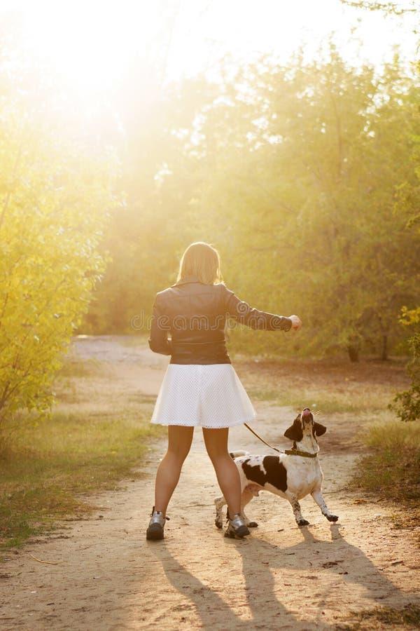 Ragazza e cane nel parco di autunno immagine stock