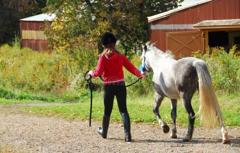Ragazza e cavallino fotografia stock libera da diritti