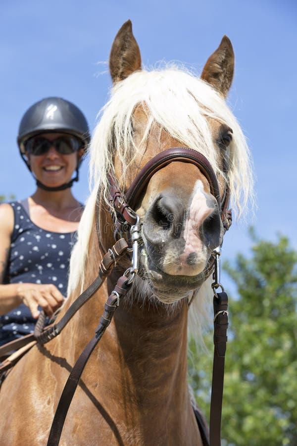 Ragazza e cavallo di guida fotografia stock libera da diritti