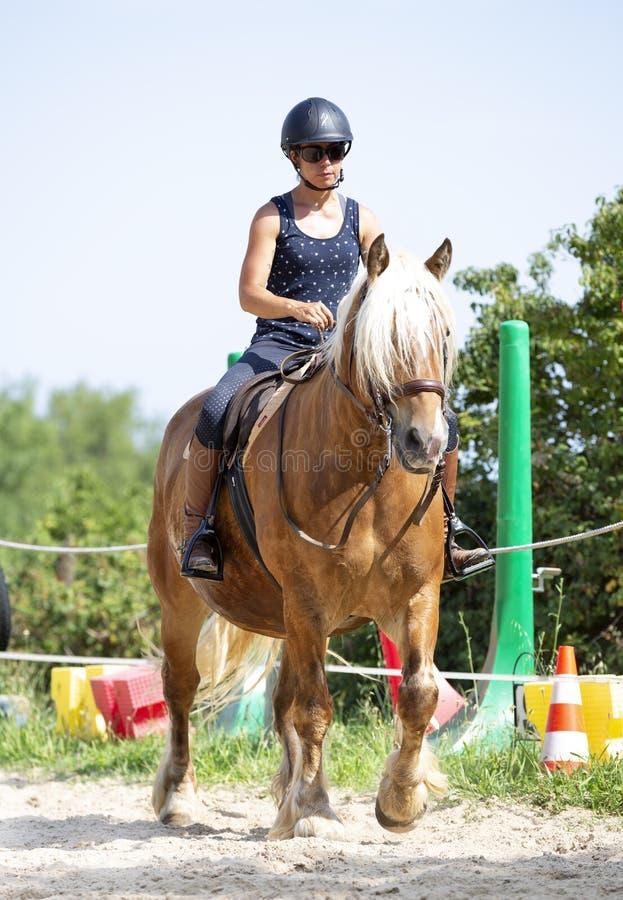 Ragazza e cavallo di guida immagini stock libere da diritti