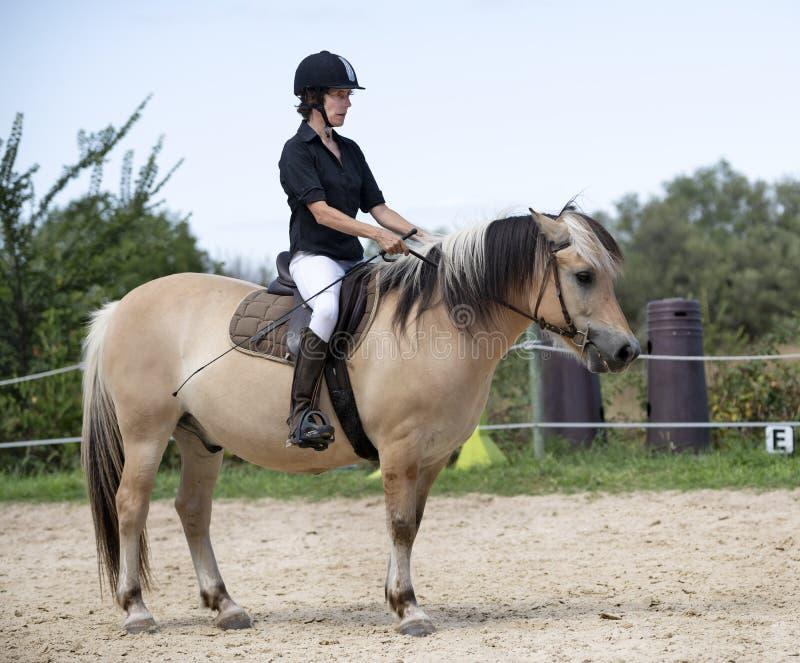 Ragazza e cavallo di guida fotografia stock