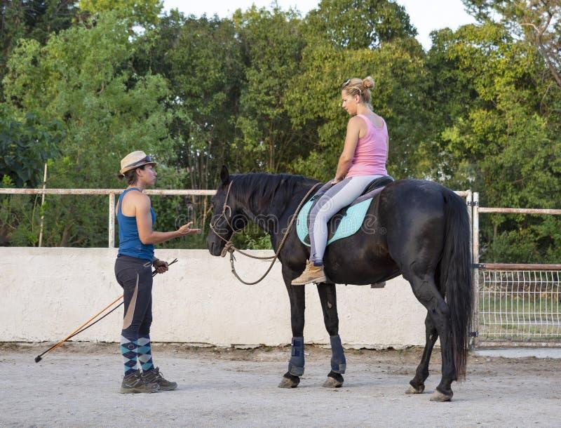 Ragazza e cavallo di guida fotografie stock